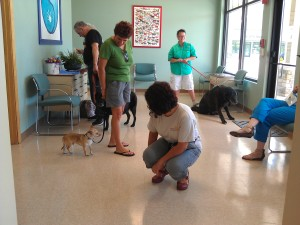 Clients and patients having a great time at Kodiak Veterinary Center's Open House.